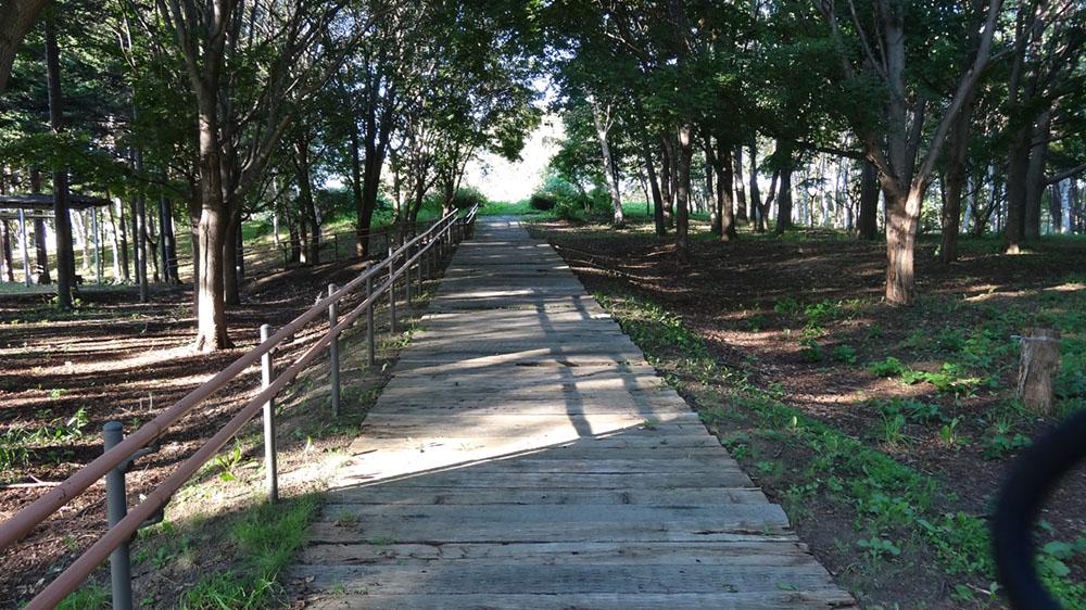 えっ!手稲にこんなとこあったんか!マイナスイオン出まくり!!「前田森林公園」
