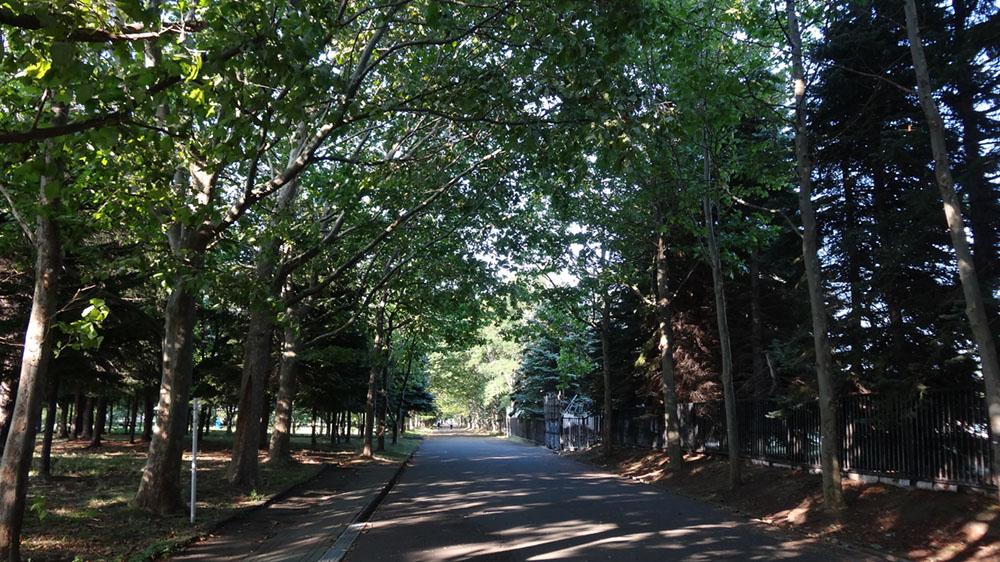 「稲積公園」は手稲プールだけじゃない!