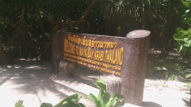 ピピ島から行くピピ・レイ島のマヤベイを含む観光ツアーを徹底紹介!